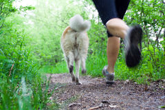 Woman Running Cross Country With Dog Stock Photos