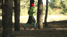 Woman running on forest track in a sunny day stock video footage