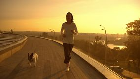 A woman running with her bulldog. A female with her pet runs on the roof. She is playing with the french bulldog at the dawn. The evening town in the background stock footage
