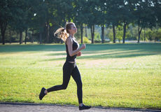Woman running in the morning park. Beauty woman running in the morning park Royalty Free Stock Photos