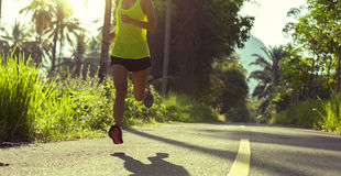 Woman running on morning tropical forest trail Stock Photos