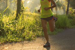 Woman running on morning tropical forest trail Stock Images