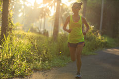 Woman running on morning tropical forest trail Royalty Free Stock Photos