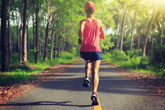 Woman running at morning tropical forest trail Royalty Free Stock Images