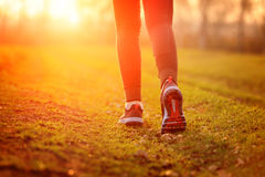 Woman and running shoes, exercising in nature. Woman and running shoes, exercising in nature Stock Photo