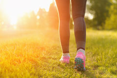 Woman and running shoes, exercising in nature. Woman and running shoes, exercising in nature Royalty Free Stock Images