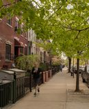 Woman running on the side walk in Brooklyn, New York. A tree lined street side walk in Brooklyn, New York City on May 3, 2014 Stock Photo