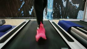 Woman running in sneakers, running legs closeup, cardio training, treadmill, girl is engaged in sports shoes on a. Simulator in the gym, sport for slender stock footage