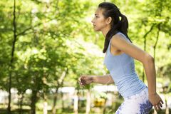 Woman running in summer forest. Female runner training Royalty Free Stock Images