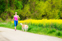Woman running in summer park with dog. Woman runner running with dog in park on country road, healthy lifestyle and training working out outdoors, exercising in Royalty Free Stock Photos