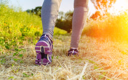 Woman running at sunset in a field Stock Photos