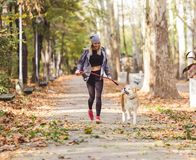 Girl running and walking in beautiful park with akita dog. Woman running and walking in beautiful park with akita dog Stock Image