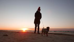 Woman running, walking, playing and having fun with her doggy at sunset on a beach near Baltic sea in spring. Colorful stock footage