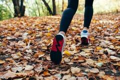 Woman runs for fall foliage, shoes closeup Stock Image