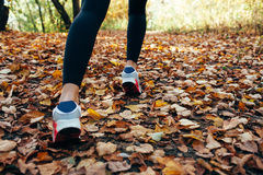 Woman runs for fall foliage, shoes closeup Royalty Free Stock Images
