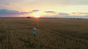 The woman runs on a field to the sunset. Slow motion stock video