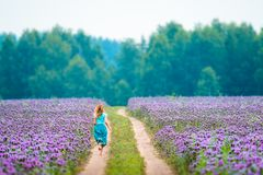 Woman runs in the field. With purple flowers royalty free stock images