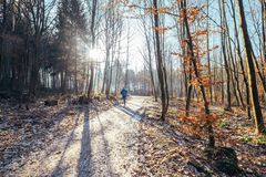 Free Woman Runs In Park - Late Autumn, First Snow Stock Images - 102563824