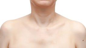 Woman& x27; s肩膀、下巴、脖子和胳膊在白色背景 库存图片