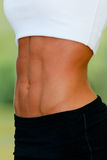 Woman's abdomen. Woman's sporty abdomen with muscles Stock Photography