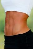 Woman's abdomen Stock Photography