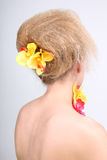Woman's back with coiffure and flowers Royalty Free Stock Photography