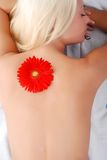 Woman's back with flower Stock Images