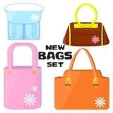 Woman`s bags set. Stock Image