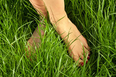 Woman's bare feet Royalty Free Stock Images