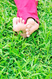 Womans barefeet on grass Royalty Free Stock Photography