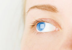 Woman`s blue eye in studio Stock Photos