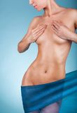 Woman's body Royalty Free Stock Images