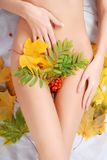 Woman's body and  maple leaves Royalty Free Stock Photography
