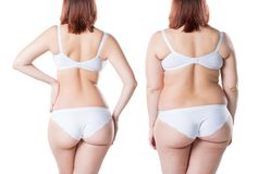 Woman`s body before and after weight loss isolated on white background royalty free stock photography