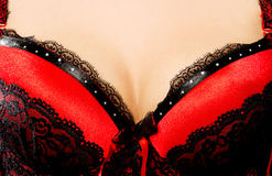 Woman`s breast in bra. Royalty Free Stock Photography