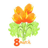 Woman`s day background. With sign and tulips Vector Illustration