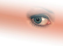 Woman's eye. Isolated woman's eye on graduated, faded background Royalty Free Stock Image