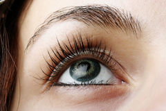Woman's eye Stock Images