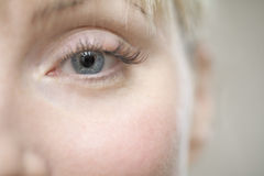 Woman's Eye Against Gray Background Royalty Free Stock Photography
