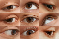 Woman's eye set Stock Photography
