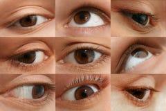 Woman's eye set stock photography