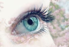 Double exposure of human eye with spring blooming trees on the background. Beauty, spirit and contact with nature concept stock photo