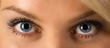 Woman's eyes. Beautiful young woman's blue eyes closeup Royalty Free Stock Photo