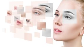 Woman`s face collected from different parts. Young woman`s face collected from different parts over white background stock image