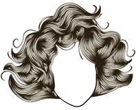 Woman's face with detailed hair Stock Images