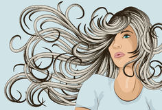 Woman's face with detailed hair Royalty Free Stock Image