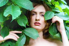 Woman's face among the leaves Stock Photos