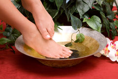 Woman's feet royalty free stock photography