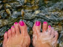 Woman& x27;s feet dipped in a creek. Woman& x27;s feet and toes dipped into a relaxing mountain creek stock photo