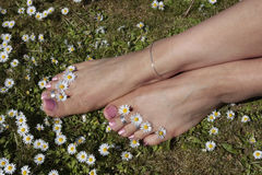 Woman S Feet In Sunny Meadow Royalty Free Stock Photo